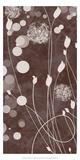 Botany Expressions VI Prints by Irena Orlov