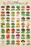 Herbs & Spices Collage Posters