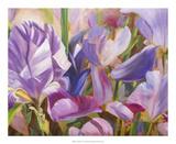Iris Details II Prints by Sandra Iafrate