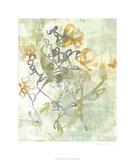 Jennifer Goldberger - Washed Floral I Limitovaná edice