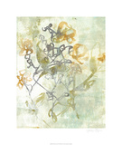 Washed Floral I Limited Edition by Jennifer Goldberger