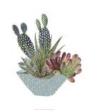Cactus Arrangement I Prints by Melissa Wang