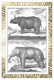 Gilded Safari I Plakat af Denis Diderot