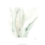 Wave Form IX Særudgave af June Erica Vess