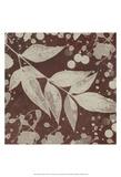 Botany Expressions III Print by Irena Orlov