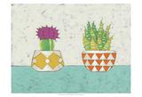 Succulent Duo II Prints by Chariklia Zarris
