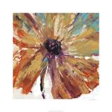 Orange Splash I Limited Edition by Tim O'toole
