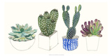 Four Succulents II Prints by Melissa Wang