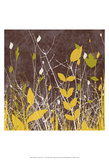 Botany Expressions V Posters by Irena Orlov