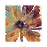 Orange Splash II Limited Edition by Tim O'toole