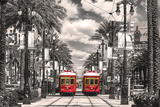 New Orleans- Streetcars On Canal Street Photo