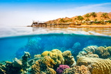 Underwater View, Coral Reef, Dahab, Red Sea, Egypt Photographic Print by Jan Wlodarczyk