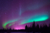Northern Lights of Churchill, Manitoba Photographic Print by Charles Nolder