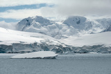 Neko Harbor, Andvord Bay, Antarctic Peninsula Photographic Print by  dani3315