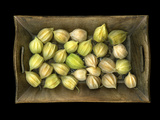Physalis on a Wood Tablet Isolated on Black Backgound Photographic Print by Christian Slanec