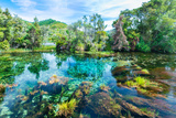 Te Waikoropupu Springs, Pupu Springs in the Golden Bay Region on the South Island in New Zealand Photographic Print by David Kleyn