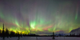 View of Northern Lights and Spruce Trees in Broad Pass, Southcentral Alaska, Winter Photographic Print by Rick Carlson