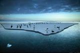 Adelie Penguins on an Ice Floe Cape Adare Antarctica Papier Photo par Steve Bloom