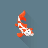 Flat Design White Orange Red Japanese Carp Koi Illustration Photographic Print by Aleksey Kurenkov
