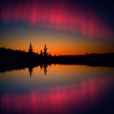 Northern Lights Reflecting on a Lake, Lappland, Norway, Scandinavia, Europe Photographic Print by Harald Bauhofer
