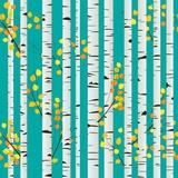 Birch Forest Pattern Photographic Print by  Lirch