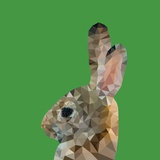 Abstract Polygonal Vector Illustration. Portrait of Rabbit Photographic Print by Jan Fidler