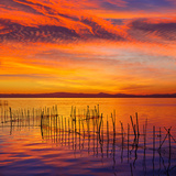 La Albufera Lake Sunset in El Saler of Valencia at Spain Photographic Print by  Naturewolrd