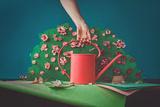 Paper Garden Photographic Print by Dina Belenko