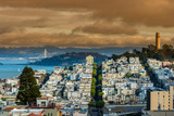 Top View over Telegraph Hill Neighborhood and Coit Tower, San Francisco, California, USA Photographic Print by Stefano Politi Markovina