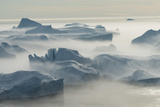 Stranded Icebergs at the Mouth of the Icefjord Near Ilulissat, Greenland Photographic Print by Luis Leamus