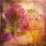 Botanicals Still Life with Flowers Photographic Print by Tim Kahane
