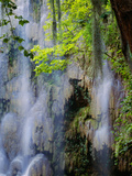 "Waterfall [Sierra Madre Occidental] ""Nuevo Leon"" Mexico Fotografie-Druck"