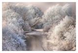 Winter Song Prints by Sebestyen Bela