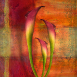 Botanicals Still Life with Lillies Photographic Print by Tim Kahane