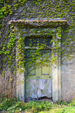 Vegetation and Ivy Growing over Empty Hall Near Leeds Yorkshire Uk Photographic Print by Paul Ridsdale