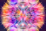 Colorful Pastel Background - Vivid Color Abstract Dandelion Flower - Extreme Closeup Photographic Print by Paul Watzlaw