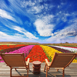 Very Bright Colorful Flower Fields Photographic Print by Paul Watzlaw