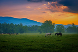 Sunset of Great Smoky Mountain Photographic Print by Rui Xu