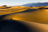 Mesquite Sand Dunes in Death Valley National Park Photographic Print by Scott Sady