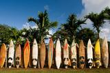 Surfboards Decoration in Garden, Huelo, Hawaii Photographic Print by Sergi Reboredo