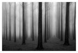 In a Fog Prints by Jochen Bongaerts