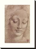 Testa Di Giovinetta Stretched Canvas Print by Leonardo Da Vinci