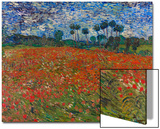 Poppy Field, 1890 Prints by Vincent van Gogh