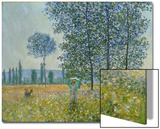 Fields in Spring, 1887 Art par Claude Monet