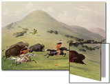 The Buffalo Hunt, C.1832 (Coloured Engraving) Print by George Catlin