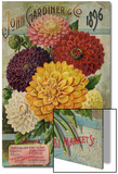 John Gardiner and Co. 1896: Dahlias Prints