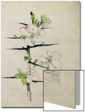 Blackthorn, Chiddingstone, Kent, 1910 Print by Charles Rennie Mackintosh