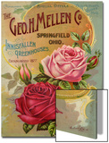 Seed Catalogues: The Geo. H. Mellen Co. Condensed Catalogue of Special Offers Posters