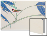 Green Bamboo and Red Bird Posters by Hsi-Tsun Chang
