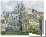 The Vegetable Garden with Trees in Blossom, Spring, Pontoise, 1877 Print by Camille Pissarro